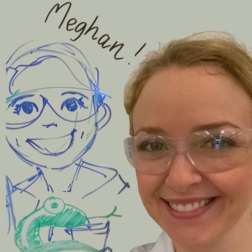 Meghan Castelli